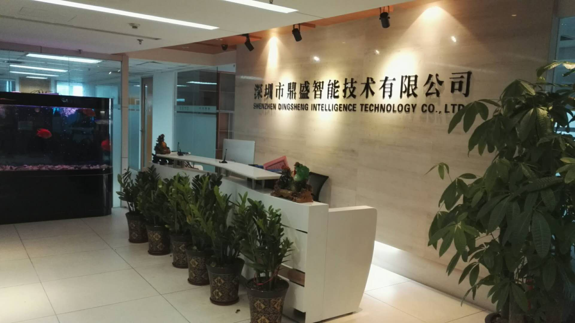 深圳市鼎盛智能技术有限公司