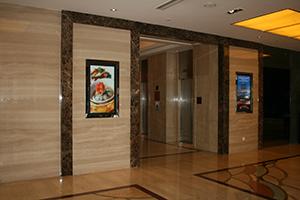 供给云南昆明豪生酒店IDS STB-3000