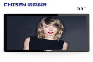 chisen-BG55